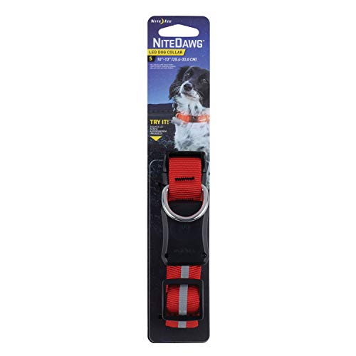 Dog Collar With Ize Red Light