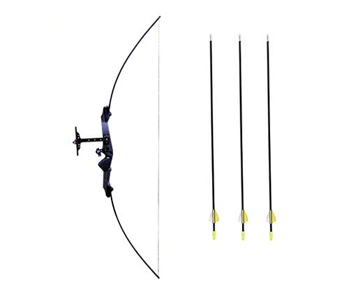 IRIS Take Down Bow for Outdoor Hunting Practice Shooting Competition Archery Recurve Bow and Arrow Set