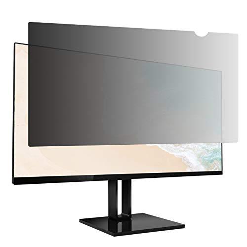 AmazonBasics - Blickschutzfilter für 22 Zoll (55,88 cm) Breitbildschirm (16:10)