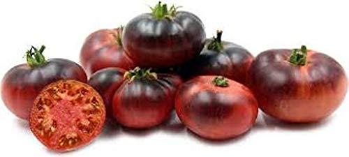 Portal Cool Tomate Indigo, azul, dulce, semillas semi, semi