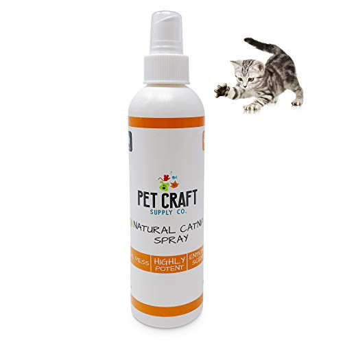 Pet Craft Supply Premium Potent Catnip Spray for Cats for Scratching Post All Natural Concentrated USA Grown & Harvested 8 oz Value Bottle Training Redirecting No Mess