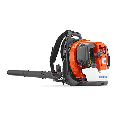 41+UKHMvuPL - The 7 Best Commercial Backpack Blowers That Make Leaf Clean-Up Easy During Fall
