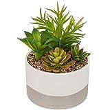 Atmosphera - Plante Artificielle Pot céramique Bicolore D14