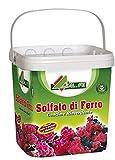 AL.FE Sulfate de Fer Anti-Mousse reverdissant microgranulaire pour Plantes et...