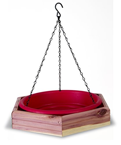 Pennington 100509196 Cedar Hanging 2 in 1 Bird Bath & Feeder, 4 LBS
