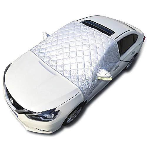 Eisschutzfolie Auto