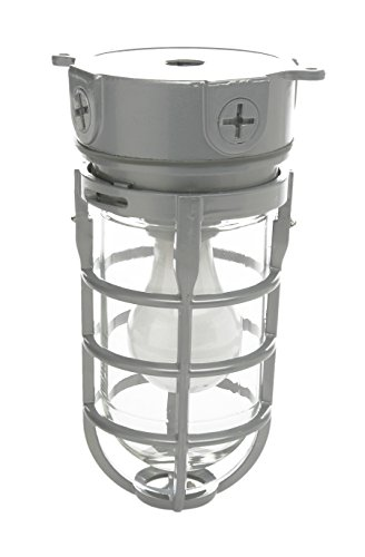 Woods Vandal Resistant Security Light With Ceiling...