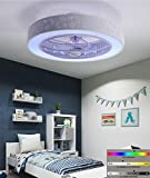 Equipped with Dual Bluetooth Music Speaker, Led Ceiling Modern Ceiling Fans, Ceiling and Dimmable 84w / 58cm Remote Restaurant Chandelier