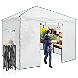 EAGLE PEAK 10'x 10' Portable Walk-in Greenhouse Instant Pop-up Easy Setup Indoor Outdoor Plant Gardening Green House Canopy, Front and Rear Roll-Up Zipper Entry Doors and 2 Large Roll-Up Side Windows