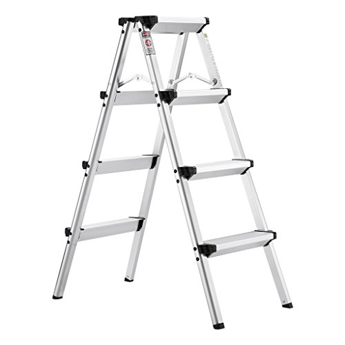 4. Little Giant Ladder