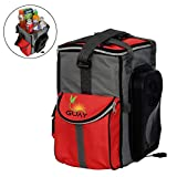 Guay Insulated Thermal Bag Cooler and Warmer – Portable Iceless Thermoelectric Car Fridge Beverage Chiller and Food Heater – 20 Cans /13 Liters / 14-Quart Capacity – 12V DC Vehicle Outlet Only