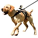 Heywean Dog Harness with Camera Mount from Dog Perspective, Harness and Leash Set with High Stability, Adjustable Vest for Medium and Large Dogs(Black, L)