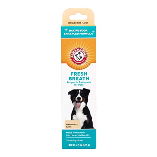 Arm & Hammer for Pets Clinical Care Dental...