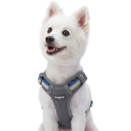 Blueberry Pet 9 Colors Soft & Comfy 3M Reflective Multi-Colored Stripe Mesh Padded No Pull Dog Harness Vest with Back Leash Clips, Medium, Pink, Emerald & Orchid