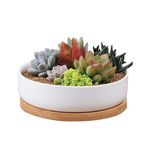 Y&M (TM), Keramik-Blumentöpfe, Mini Deko, rechteckige Pflanztöpfe für Sukkulente, Kakteen, mit Bambustablett, Weiß