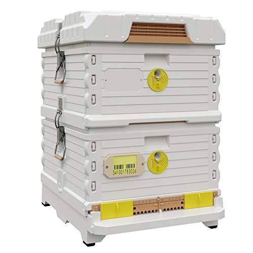 Apimaye 10 Frame Langstroth Insulated Beehive