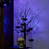 PEIDUO 2FT Halloween Black Tree Battery Powered with 24 Purple Lights and 8 Bats Ornaments Light Up Bonsai Tree for Halloween Indoor Tabletop Decoration