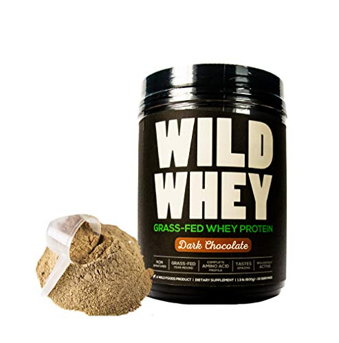 Grass-Fed Whey Protein, Cold Process, Low Carb, Keto Friendly, Non-Denatured, GMO-Free Protein Concentrate Made Directly from Grass-Fed Milk (600g - 1.32 Pound, Dark Chocolate)