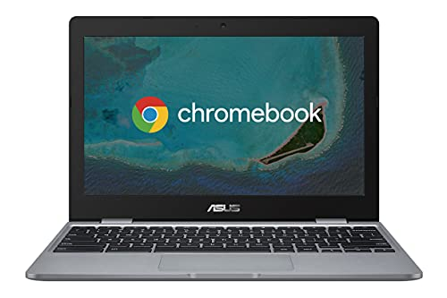 Asus Chromebook C223 Notebook con Monitor 11,6' HD...