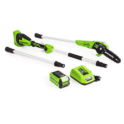 Greenworks PS40B210 8-Inch 40V Cordless Pole Saw, 2Ah Battery