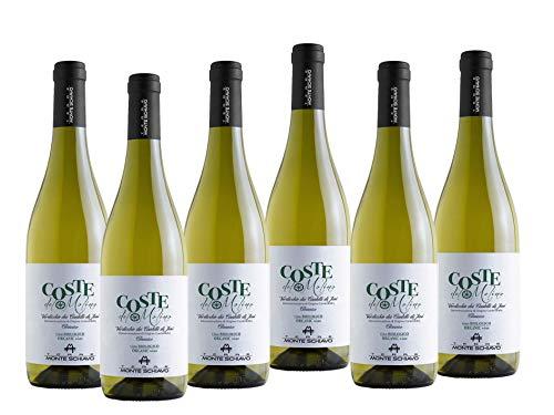 COSTE DEL MOLINO Verdicchio dei Castelli di Jesi DOC Classico 2019 BIOLOGICO - 6 bottiglie da 750 ml