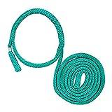 ROPE Logic Loopie Sling 850 3/4' se ajusta 2' - 8' 5.000 SWL, verde