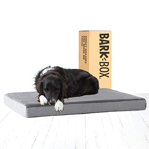 Barkbox Memory Foam Platform Dog Bed   Plush Mattress for Orthopedic Joint Relief   Machine Washable Cuddler with Removable Cover and Waterproof Lining   Includes Squeaker Toy   Grey   Large