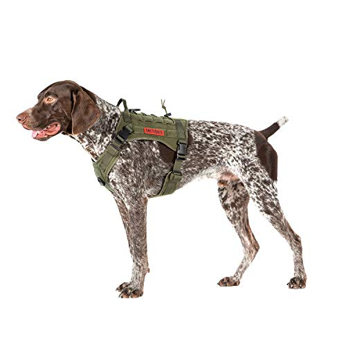 OneTigris Tactical Dog Harness,No-Pull Vest with Leash Clips,Military Dog Harness Adjustable for Hiking Training Outdoor Dogs(Ranger Green, Medium)