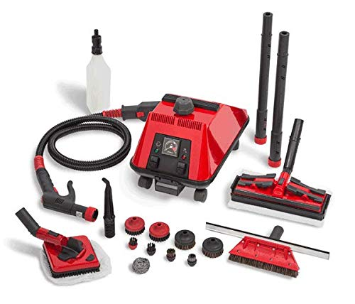 Sargent Steam Cleaner Cleaning System - Multi-Purpose, High Pressure,...