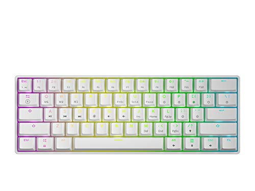 HK Gaming GK61 Teclado mecánico 61 Teclas RGB Iluminado, retroiluminación LED, para Juegos PC/Mac Gamer (Blanco, Gateron Optical Brown)