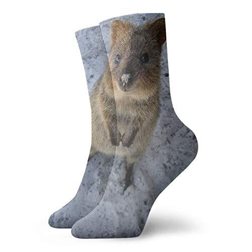 Quokka Calzini classici per il tempo libero sport calzini corti 30 cm, adatti per uomini e donne