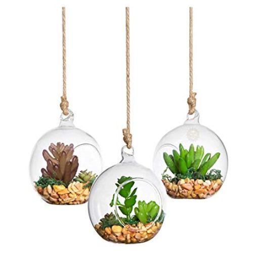 SunGrow Hanging Glass Orbs