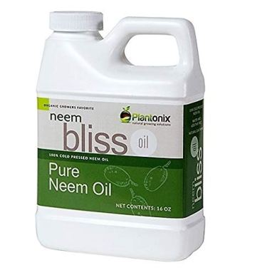 Organic Neem Bliss 100% Pure Cold Pressed Neem Seed Oil - (16 oz) High Azadirachtin Content - OMRI Listed for Organic Use