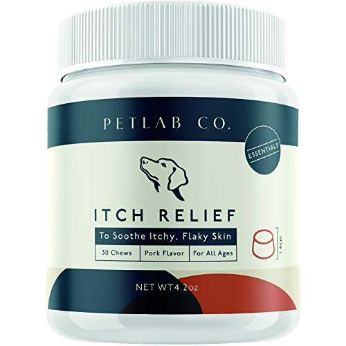 Petlab Co. Itch Relief Chews for Dogs | Anti Itch Dog Chews for Soothing Itchy Dog Skin | Turmeric Curcumin, Fatty Acids, and Hone 1