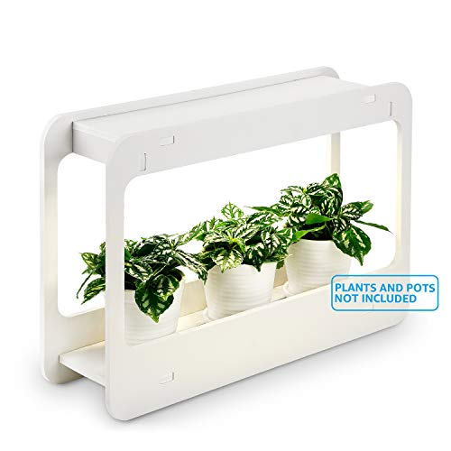 TORCHSTAR Plant Grow LED Light Kit, Indoor Herb Garden with Timer Function, 24V Low Voltage, Indoor Harvest Elite for Gourmet or Plant Enthusiasts, Rosemary, Lavender, Pots & Plants Not Included