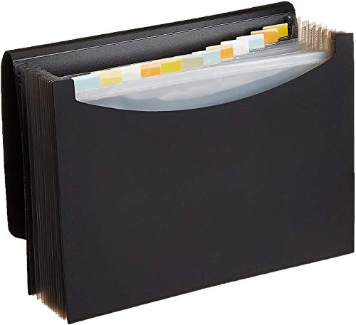 Amazon Basics Expanding Organizer File Folder, Letter Size -...