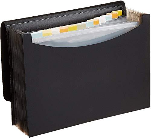 Amazon Basics Expanding Organizer File Folder, Letter Size -...