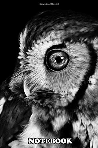 Notebook: Owl With Galaxy Eye Head Art Black And White Wallpaper , Journal for Writing, College Ruled Size 6' x 9', 110 Pages