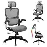 Office Chair Ergonomic Desk Chair - Mesh High Back 3D Lumbar Support Computer Chair, Adjustable Height & Headrest, Swivel Executive Chair with Flip-Up Armrests, Reclining Home Office Desk Chair, Grey