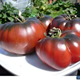 Tomate Black Krim/Noire de Crimee Lot de 20 graines de Portugal 100% naturelles de...