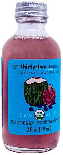 Organic, Raw, Vegan Coconut Water Kefir Shots (Blueberry + Pomegranate)