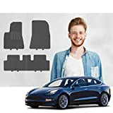 Road Comforts Tesla Model 3 Custom Fit Floor Mats - 2017 2018 2019 2020 - Protect Floor from Dirt, Mud, Snow, Slush & Water - Front and Second Row (4pcs) (Black)
