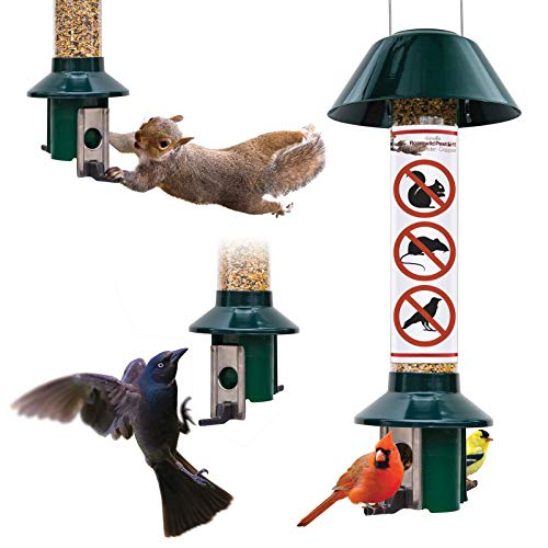 "Roamwild Squirrel Proof Wild Bird Feeder Mixed Seed Sunflower Heart Version - GREEN - 3LBS SEED CAPACITY – 20.5""x7.5""x7.5"" (w/hanger)"