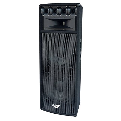 Portable Cabinet PA Speaker System - 1600 Watt Outdoor Sound System Vehicle Stereo Speakers w/ Dual 12' Woofers, 3.4' Piezo Tweeters, 5'x12' Super Horn Midrange, Crossover Network - PylePro PADH212,Black