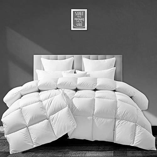 APSMILE European Goose Down Comforter King Size Luxurious All Seasons Duvet Insert - Ultra-Soft Egyptian Cotton, 55 Oz 750FP Fluffy Medium Warmth, Solid White