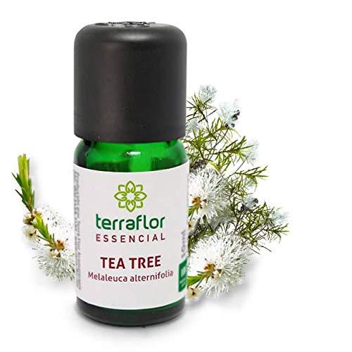 Óleo Essencial de Tea Tree Melaleuca Terra Flor 10ml