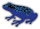 Poison Dart Frog Sticker for Car Vinyl Decal Window Truck Window Car Bumper Sticker Laptop Decal Motorcycle Helmet (5')