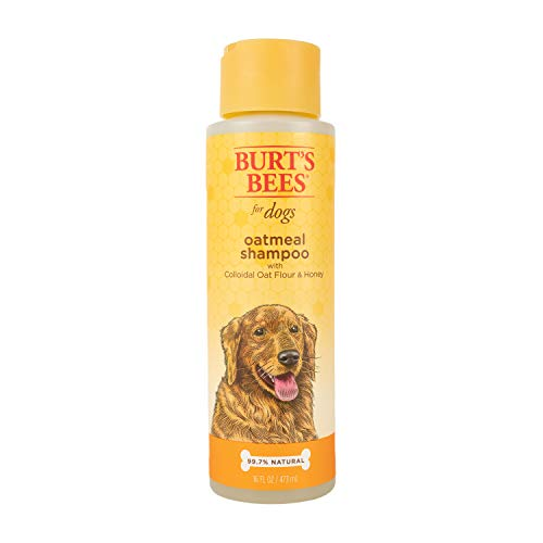 Burt's Bees for Dogs Oatmeal Dog Shampoo   With...