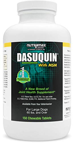 Nutramax Dasuquin with MSM Chewables, Large Dog,...