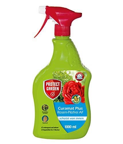 Bayer Giardino Rose baymat Plus AF Fungo Combattere, incolore, 1000ML